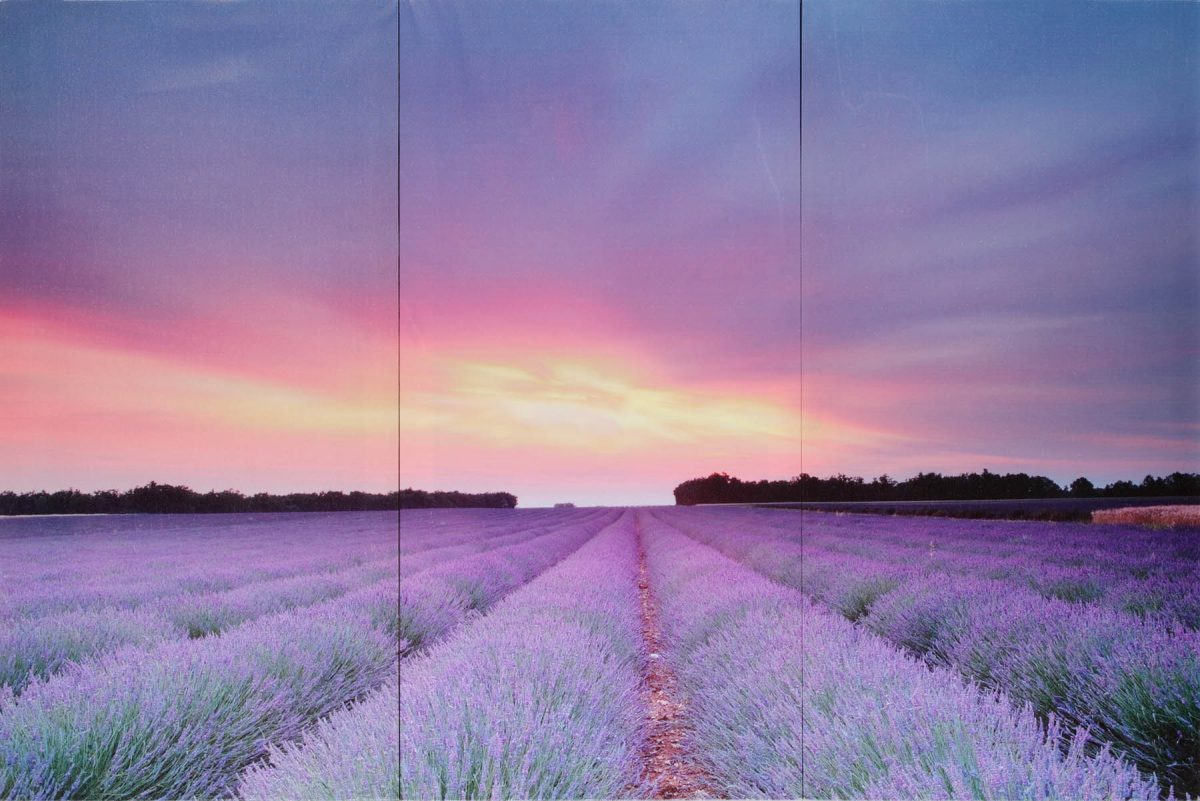 Set 3 canvas 30×60 lavender
