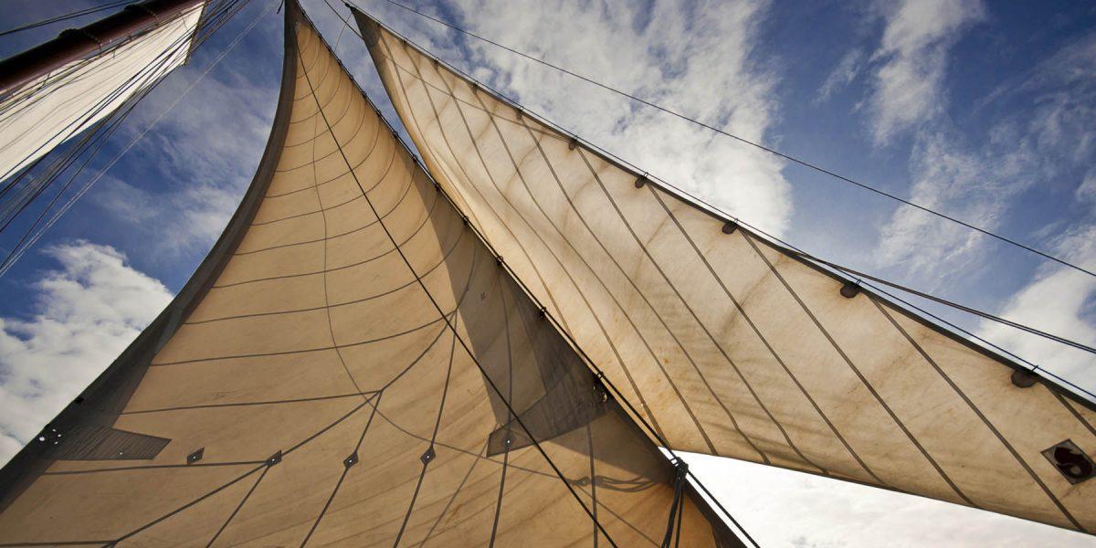 Canvas 50×100 sails