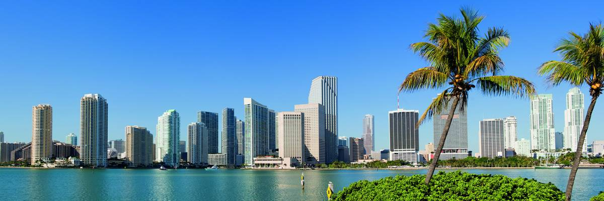 Canvas 0259 50×150 miami