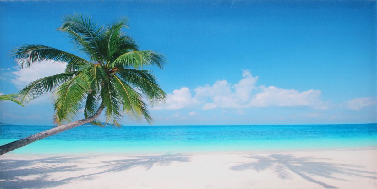 Canvas 50×100 tropical island