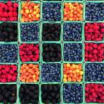 Canvas 0220 40×40 raspberries