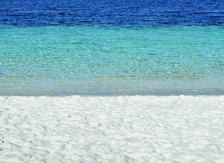 Canvas 0284 80×110 beach
