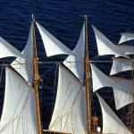 Glossy/fp01 100×150 classic sailing